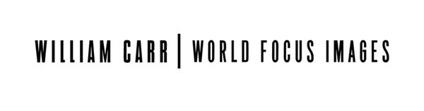William Carr Gallery Logo