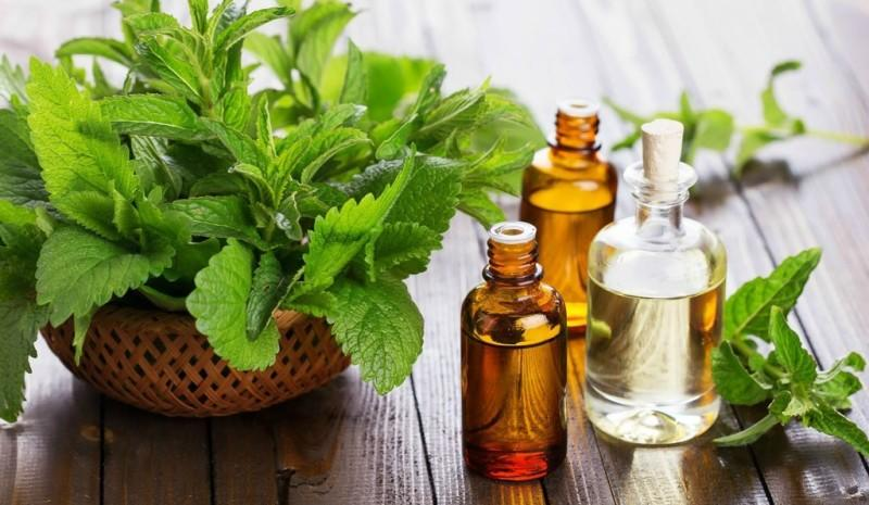 Peppermint Essential Oil from Sheer Treasures