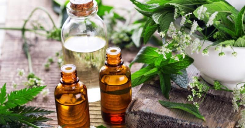 Essential Oils from Sheer Treasures