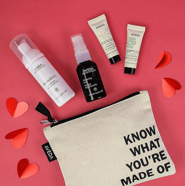 9948d6e39ac8 Free Know What You re Made of Bag Kit from Aveda