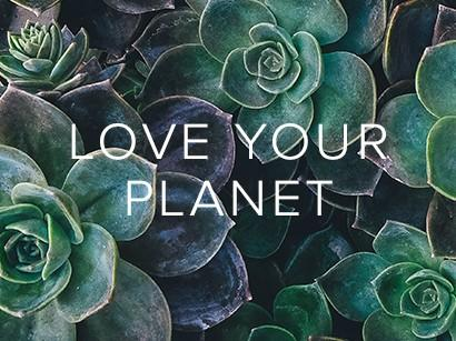 "picture of succulents with ""love your planet"" written over"